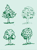 Vector trees with leaves   black silhouettes