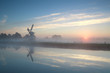 Dutch windmill by river during misty sunrise