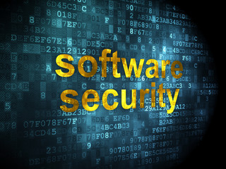 Privacy concept: Software Security on digital background
