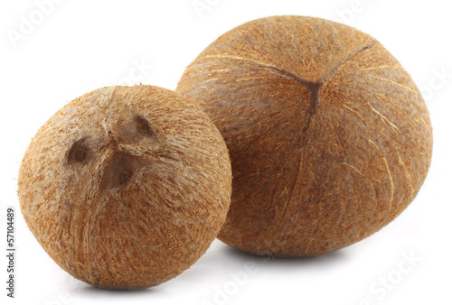 Two Coconuts over white background