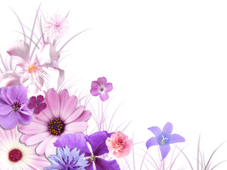 Blütenarrangement_01