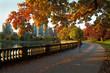 Morning Jog, Stanley Park, Vancouver