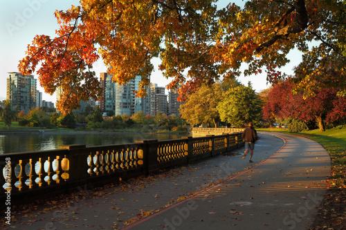 Foto op Canvas Canada Morning Jog, Stanley Park, Vancouver