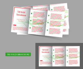 trifold brochure design prasentation