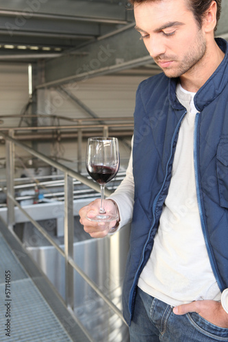 Winemaker in plant
