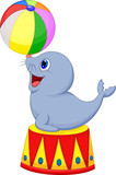 Fototapety Illustration of Circus seal playing a ball