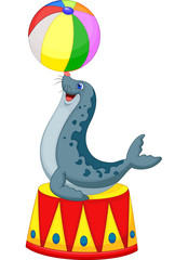 Illustration of Circus seal playing a ball