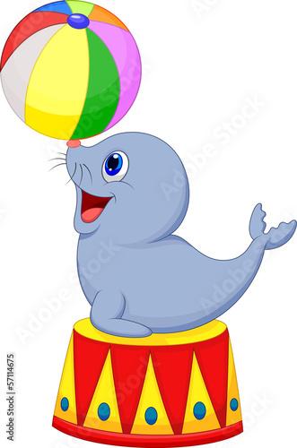 Illustration of Circus seal playing a ball