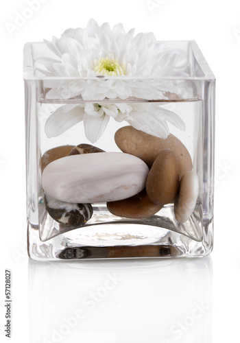 Decorative vase with flower, water and stones isolated on white