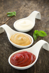 Assorted sauces: mayonnaise, ketchup, mustard.