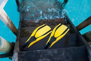 fin for scuba driving