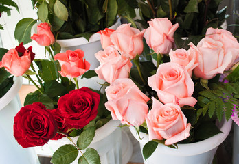 rose for retail trade