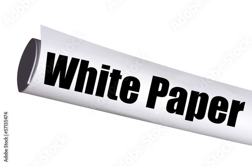 white paper report for business