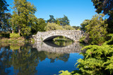 Old Stone Bridge 1