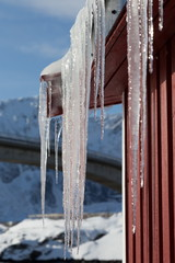 group of icicles on the roof