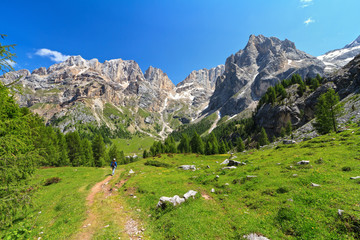 Dolomiti - landscape in Contrin Valley