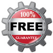 FREE GUARANTEE ICON
