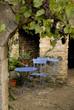 bassin, lierre, vigne, Jardin de Cadiot, Carlux, 24, Dordogne