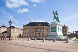 Brokkdorffa Palace and the statue of Frederick V poster