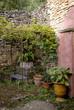 treille, vigne, mur , Jardin de Cadiot, Carlux, 24, Dordogne