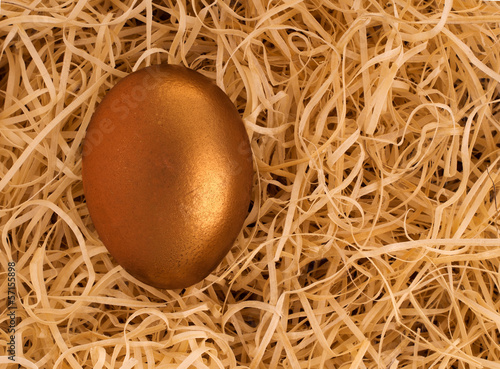 Golden nest egg, protected - financial concept background
