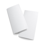 Couple of  blank trifold paper brochure. poster