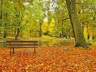 Abandoned wooden bench in autumn park.