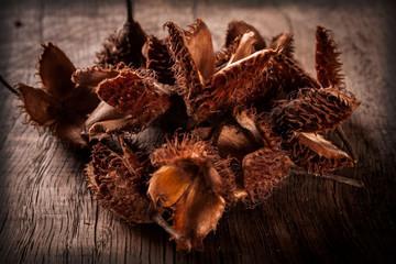 beechnuts on wooden table