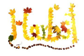 das Wort Herbst aus bunten Blättern geschrieben