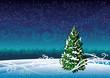 Winter landscape and snowy fir.