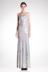beautiful woman posing in long elegant silver sequins dress