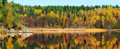 Autumn forest with reflections in a lake