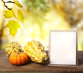 Squashes and greeting card