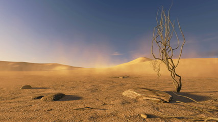 Sunset in a desert with dead trees and sand blowing