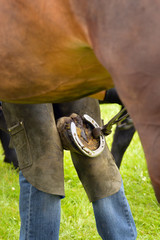A farrier nailing on shoes