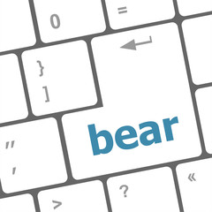 bear word on keyboard key, notebook computer button