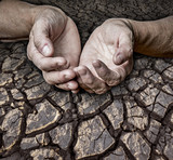 old elderly hands and dry earth