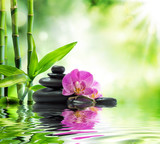Background spa - orchids black stones and bamboo on water
