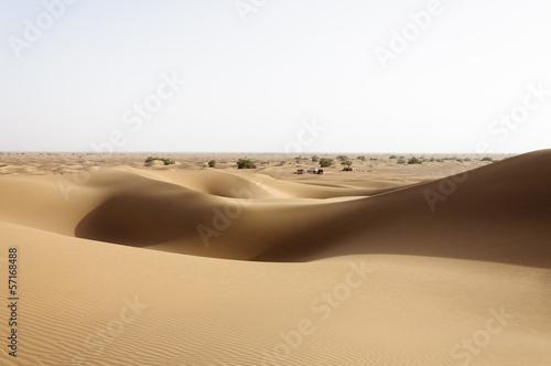 Fototapeten,afrika,morocco,busch,ocolus