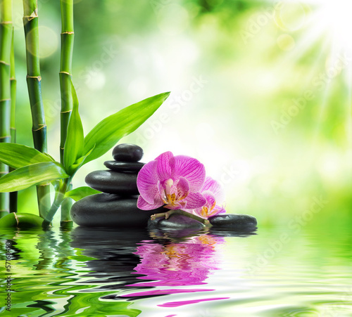 canvas print picture Background spa - orchids black stones and bamboo on water