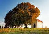 Autumn tree and chapel