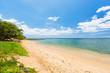 Fototapeten,strand,hawaii,palme,braun