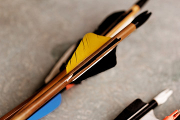feathered end of arrows