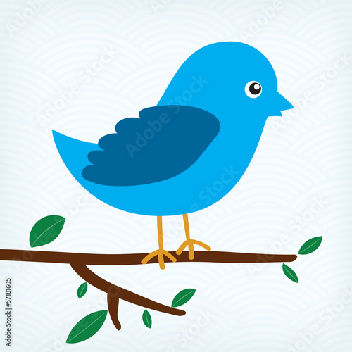 blue bird sitting on a tree branch