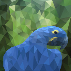 vector summer background with polygonal parrot
