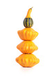 Decorative squash and bush pumpkins on white background.