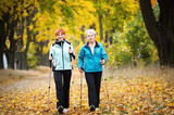 Nordic walking - 57194699