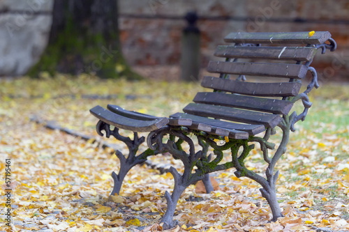 Bench in the autumn park color image