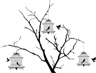 tree silhouette with birds flying and bird in a cage
