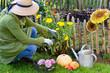 Gärtnerin schneidet Blumen
